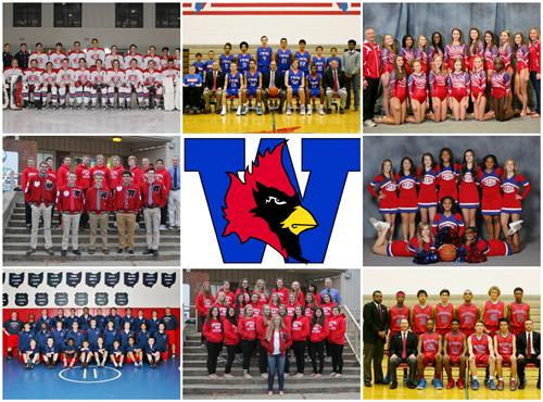 Collage of Winter Sports Team Photos