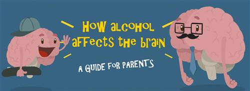 How Alcohol Affects The Brain