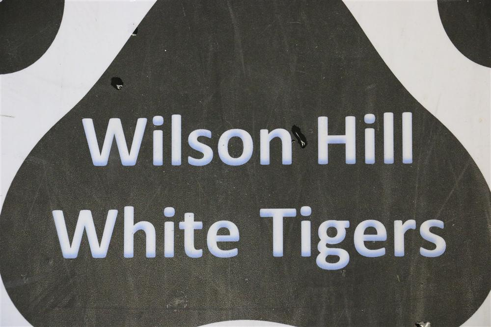 Wilson Hill White Tigers
